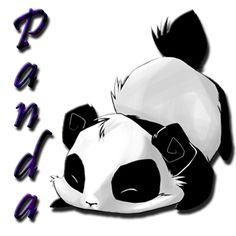 pandaaaz
